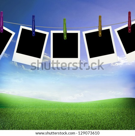 frames with field of green fresh grass under blue sky - stock photo