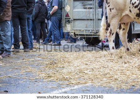 France, farmers rally in january 2016, crisis, anger about common agricultural policy