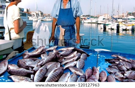 France. Marseille. Fish Market. Yachts. The seller and buyer.