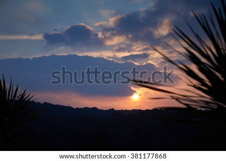 France, Mougin, sunset in Provence, morning sun, the sun glare, trees in fog, meadows