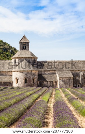 France, Provence Region, Senanque Abbey. Lavander field in summer season. - stock photo