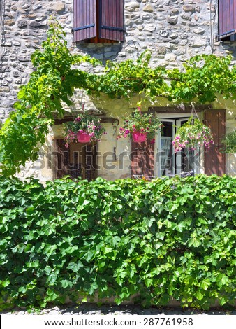 France, Provence. Vaison la Romaine. Typical medieval houses decorated with green plant and flowers in pots.  - stock photo