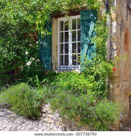 France, Provence. Vaison la Romaine. Typical medieval houses with open window and decorated with green wild grapes - stock photo