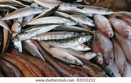 France, stall of fishes at the fish merchant in Normandy