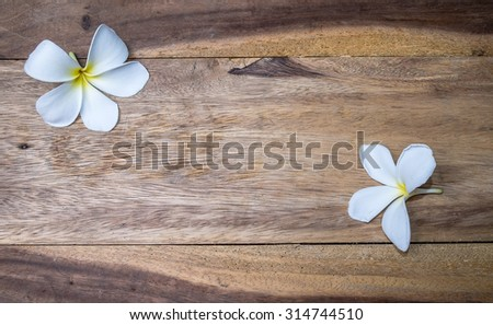 frangipani flower on the wood - stock photo