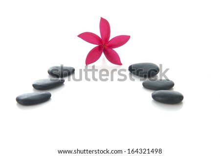 """Frangipani flower with zen rocks arange in """"V"""" shaped (selective focus and shallow DOF) with white background. - stock photo"""