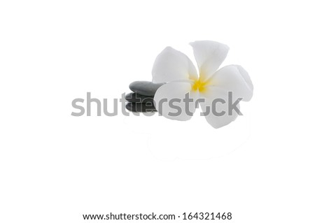 Frangipani flower with zen rocks (selective focus and shallow DOF) with white background. - stock photo