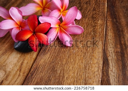 frangipani flowers  spa concept - stock photo
