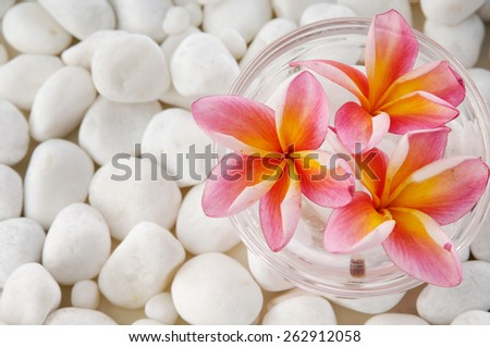 frangipani in bowl and pile of white pebbles - stock photo