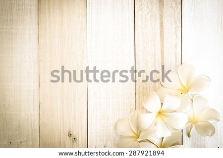 frangipani (plumeria) flowers in soft color and blur style on white wooden background - stock photo