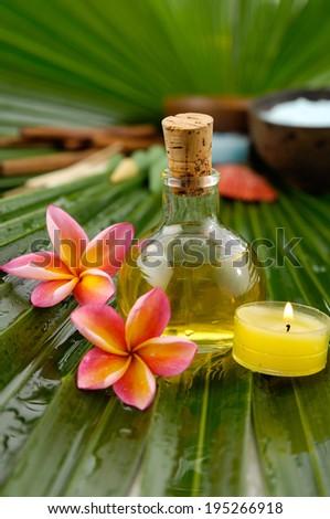 frangipani,spa oil ,towel salt in bowl ,candle on wet palm leaf  - stock photo