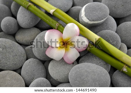 frangipani with bamboo grove on pebbles texture - stock photo
