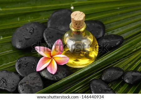 frangipani with wet spa stones and massage oil on palm leaf texture - stock photo