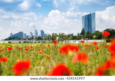 Frankfurt city with poppy field on foreground