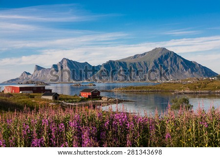 Fredvang, Lofoten, North Norway. Fishing village. Summer shot