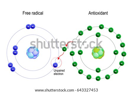 Free radical antioxidant structure atom antioxidant em ilustrao free radical and antioxidant structure of the atom antioxidant donates electron to free radical ccuart Gallery