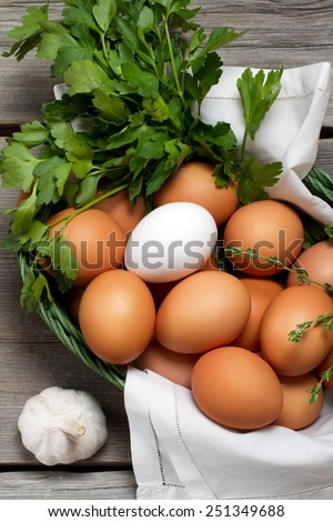 Free-range eggs, parsley and garlic - stock photo
