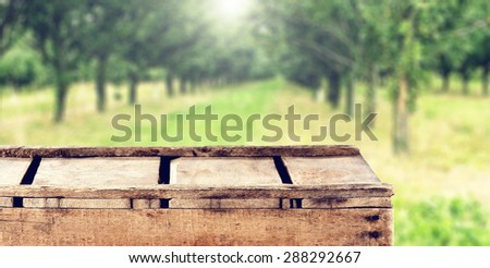 free space on wooden box green garden and sun