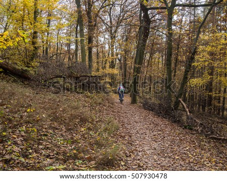 free time relaxing bicycle ride in a autumn forrest,