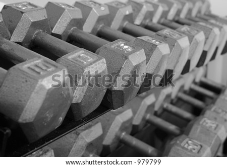 Free Weights on a Rack