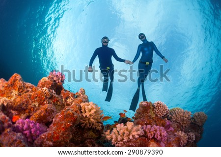 Freedivers gliding over the bright coral reef. Red Sea, Egypt - stock photo