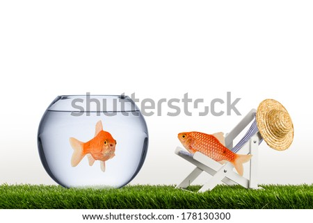 freedom fish concept - stock photo