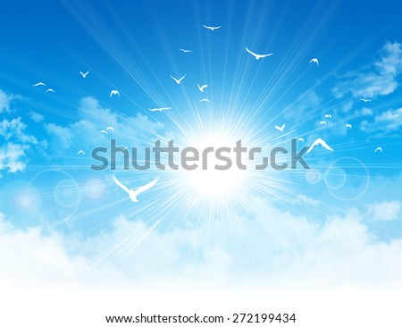 Freedom flight. White birds flight in front of the sunshine in a cloudy blue sky - stock photo