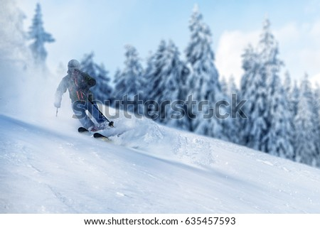 Freerider in back country powder snow with fir trees in the background. The skier is surrounded by a snow cloud.