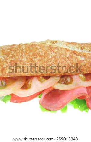 french baguette with smoked chicken salami isolated on white background - stock photo