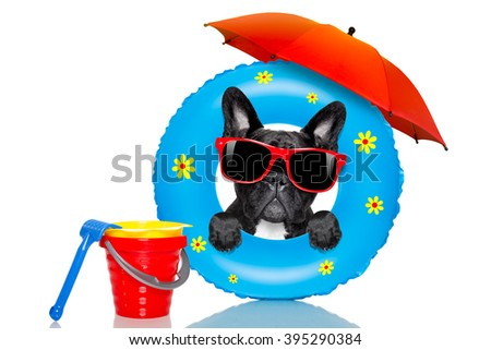 french bulldog dog relaxing on air mattress, with sunglasses  on summer vacation holidays at the beach and umbrella isolated on white background - stock photo