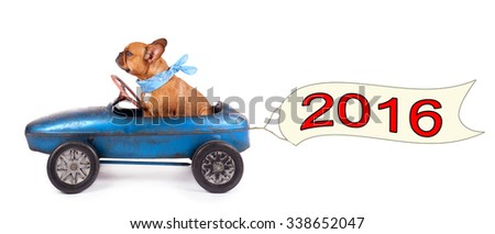 French Bulldog enjoys a ride in pedal car, with a banner for happy new year 2016