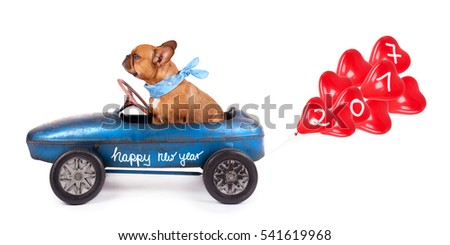 French Bulldog enjoys a ride in pedal car with red heart balloons for 2017, isolated on white