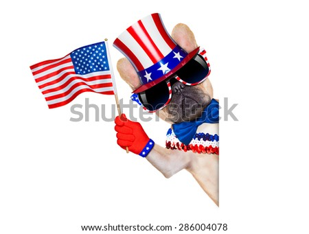 french bulldog waving a flag of usa on independence day on 4th  of july , isolated on white background, beside white blank banner