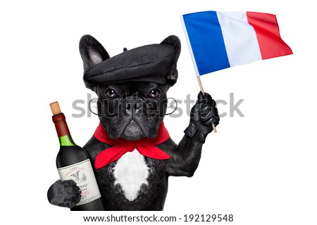 french bulldog with red wine waving flag of france - stock photo