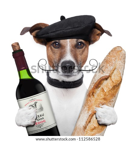 french dog wine baguette beret - stock photo
