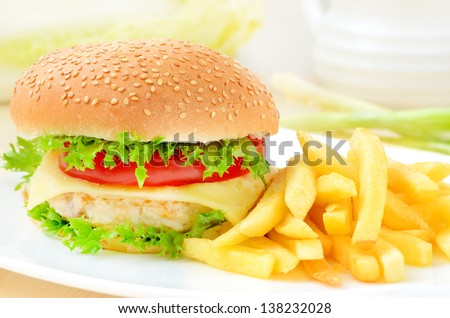French fries and hamburger on white plate - stock photo