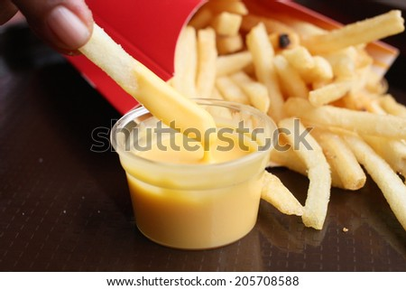 French fries with cheese sauce - stock photo
