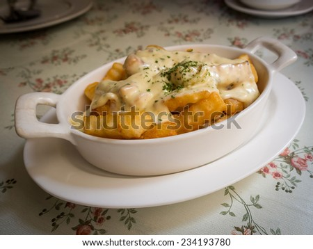 french fries with topping cream sauce - stock photo