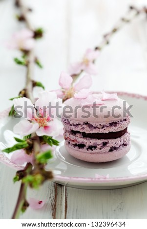 French macaroons in pink, decorated with cherry blossom - stock photo