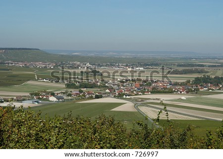 French vineyards and typical paysage of Champagne region, France
