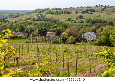 French vineyards around Saint-Emilion