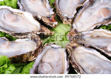 Alive Fresh Oysters Stock Photos, Images, & Pictures ...