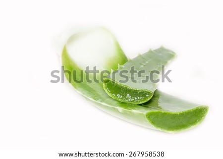Fresh aloe sliced on a white background. - stock photo