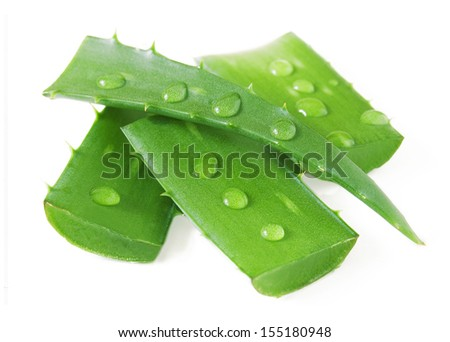 Fresh aloe vera leaves with water drops isolated on white background - stock photo