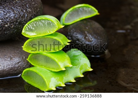 fresh aloe vera spa setting with black wet massage stones  - stock photo