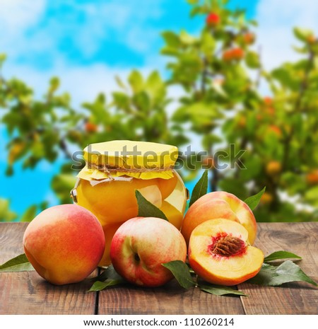 fresh and canned peaches on garden background - stock photo