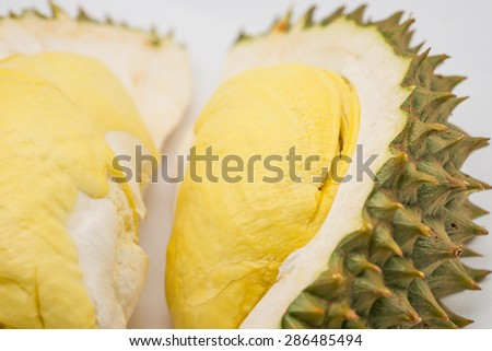 Fresh and delicious durian for tropical fruit background - stock photo