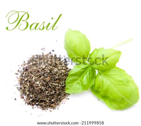 fresh and dried leaf of basil isolated - stock photo