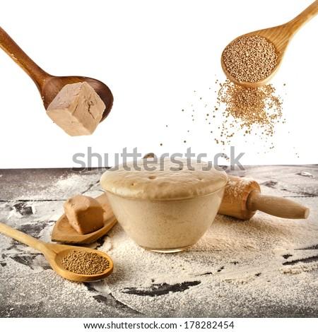 Fresh and dry yeast set  isolated on white background  - stock photo
