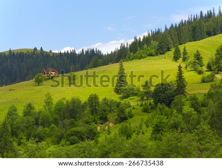 Fresh and green Carpathian landscape. - stock photo